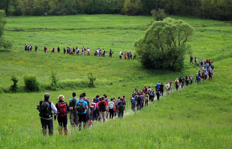 10. ĐURĐEVDANSKI POHOD NA BEŠNJAJU | Planinarski savez Srbije